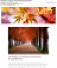 visuel_novembre_2019.png